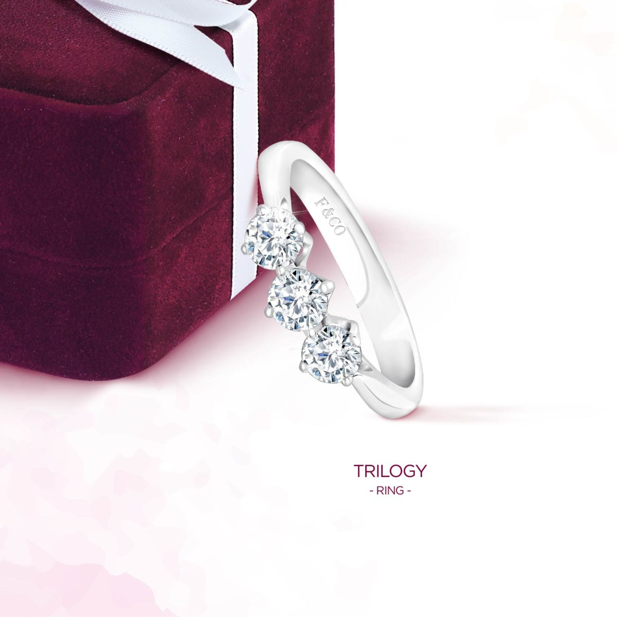 Beberapa Keunggulan Wedding Ring Jakarta dari Frank & Co